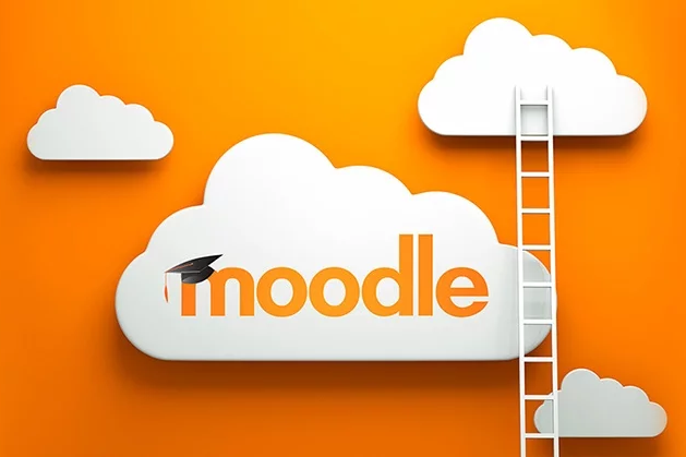 Gestión de Plataforma MOODLE para formación on line